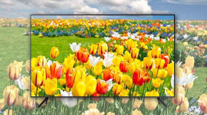 Smart Tivi Samsung 4k 65 Inch 65au7000 30418 4 1 721x400 2
