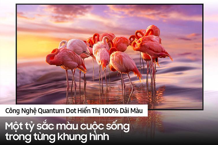 Smart Tivi Samsung Qled 4k 85inch 85q70aa 3